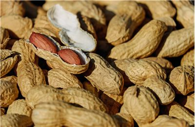 Peanut - Types and Health Benefits of Peanuts
