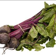 Beetroot Bundle