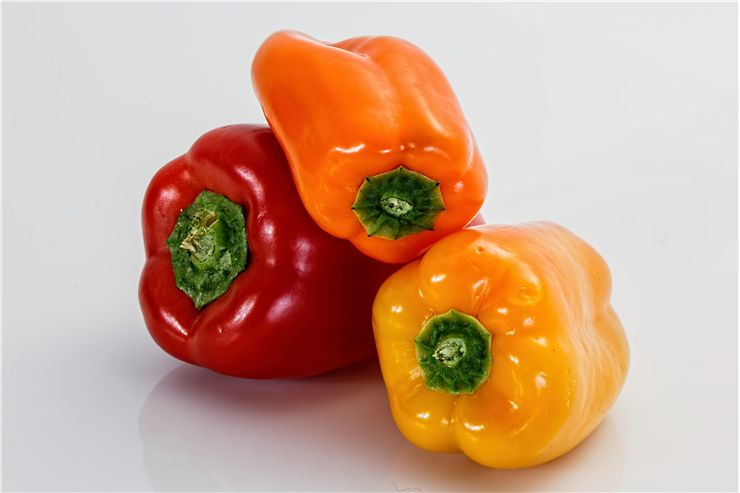 Capsicum Vegetable Sweet Peppers