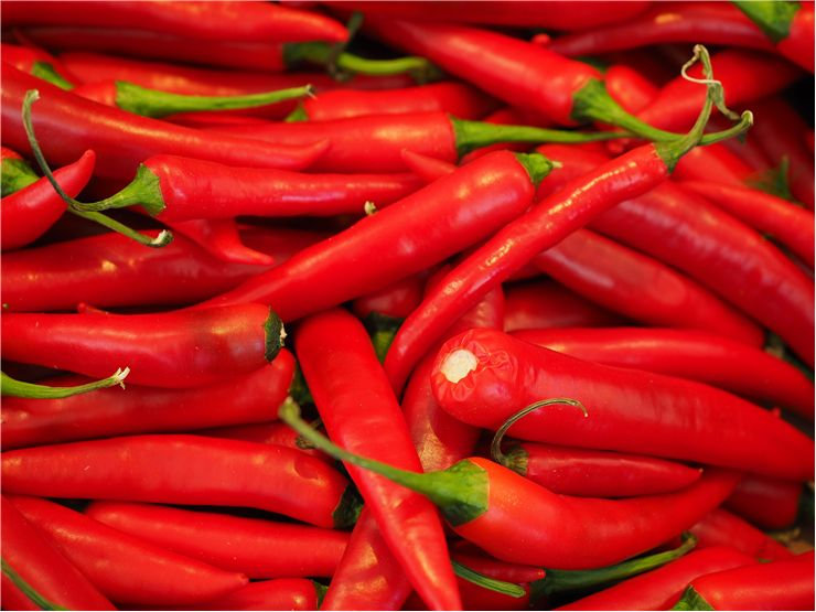 Capsicum Chili Red Peppers