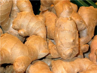 Ginger History - Origin and Traditional Uses of Ginger