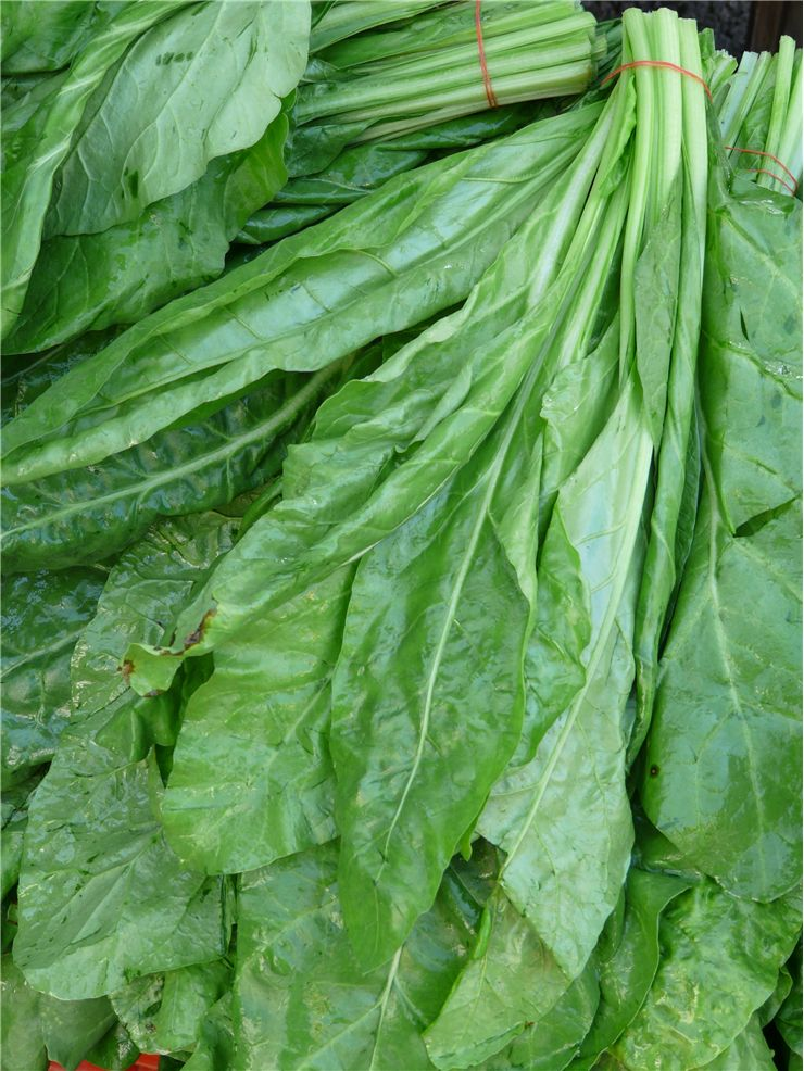 Spinach Green Vegetable