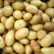 Yellow Potato Vegetable