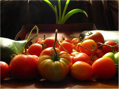 Tomato Red Fruit - Vegetable